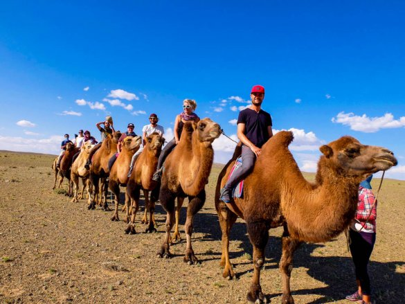 Camel riding on the bottom of Khongoryn Els