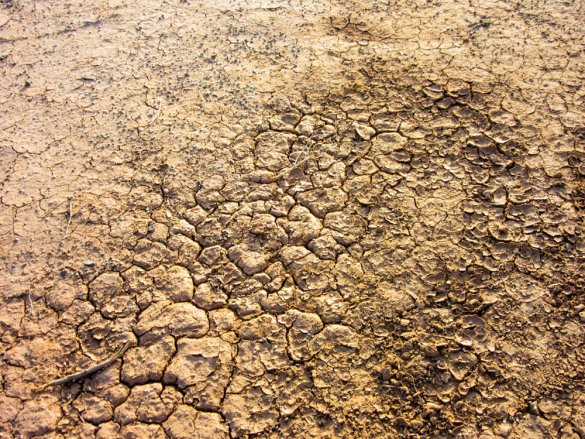 Cracks in the ground in the Gobi desert in Mongolia